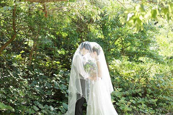 wedding photo plan